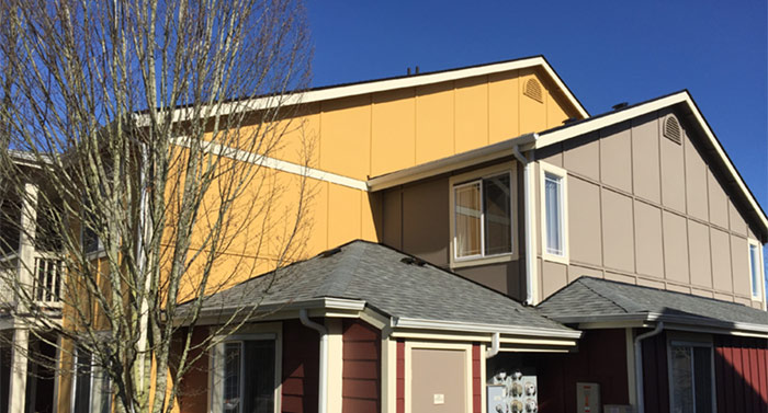Multi-family painting project Lynnwood, Washington by Armadillo Painting